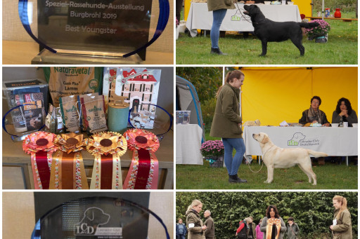 *Boss* (BEST OF BREED) - *Mary* (Best Youngster)