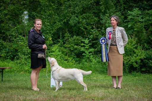 *Mary* (Best Junior in Show)